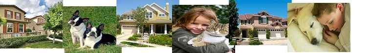 Pet friendly lease home search page. Find homes for lease in South Orange County that allow pets.